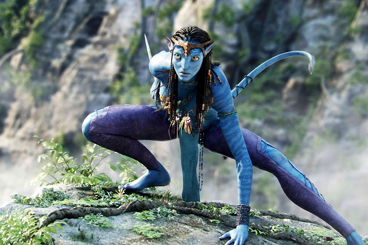 還會有《Avatar 2》的出現嗎?